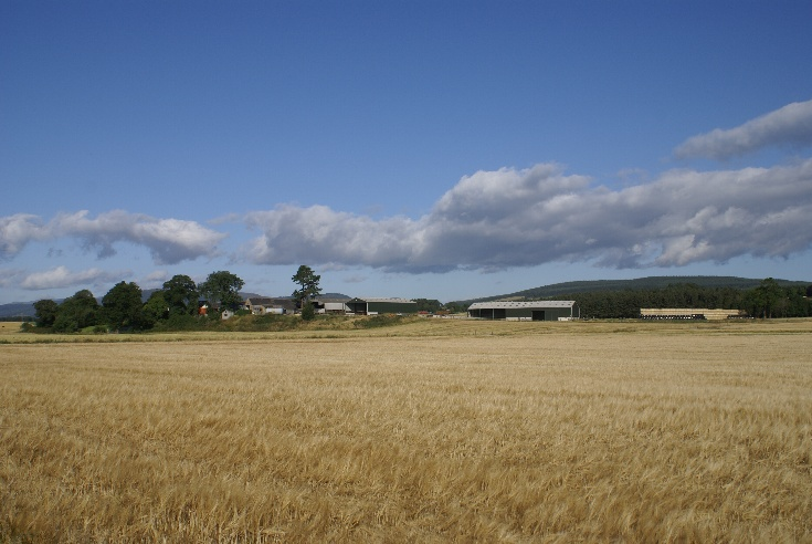 Lower Kincraig Farm