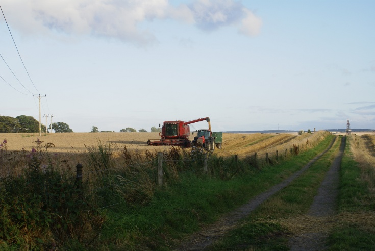 Bringing in the Harvest at Mains Farm