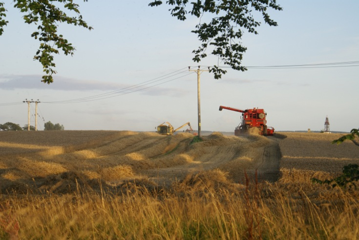Harvest Time at Mains Farm