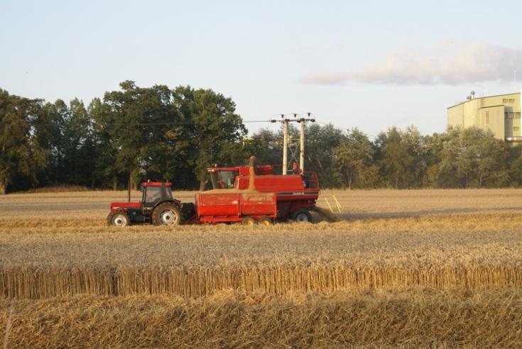 Teamwork at the Harvest