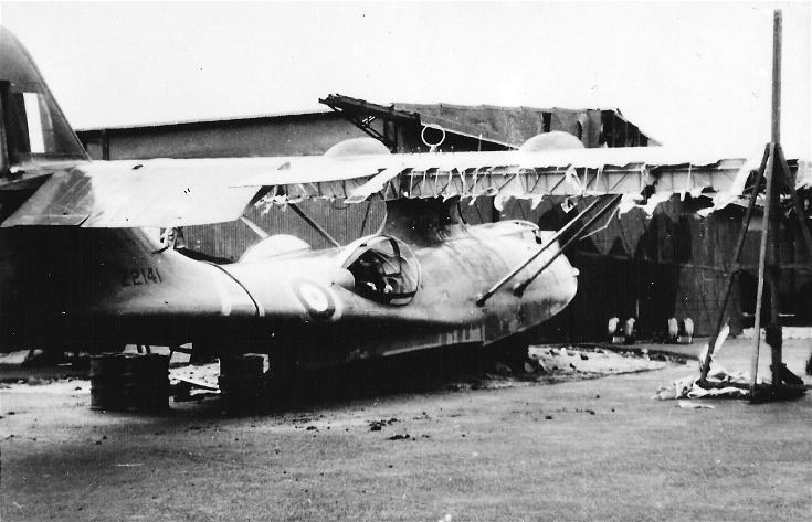 Catalina Z2141
