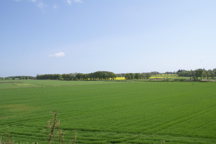The View South East from Lower Kincraig Farm