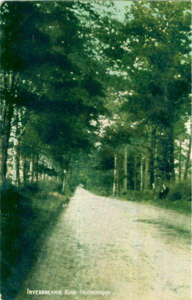 Inverbreakie Road, Invergordon