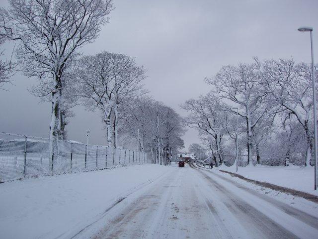 Winter in Invergordon